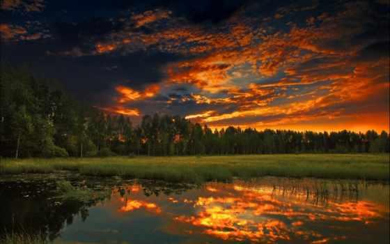 природа, summer, закат