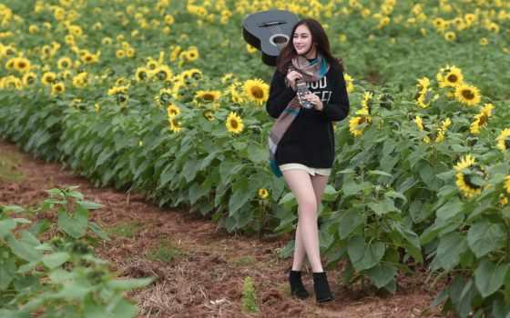 подсолнух, девушка, гитара, музыка, sunflowers, goodfon