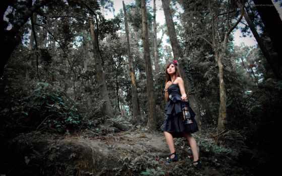 девушка, лесу