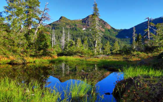 аляска, природа, горы, trees, озеро, water, трава, гладь, природы, пейзажи -,