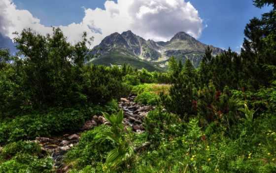 горы, камни, небо, oblaka, youtube, hdr, зелёный, стены, сосны, день,