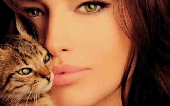 девушка, кот, кошки, взгляд, зеленоглазая, женщина, свет, стоковое, brunette, котенок, everything,