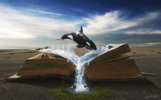 zhivotnye, design, behance, книга, pinterest, more, art, retouching, story, manipulation,