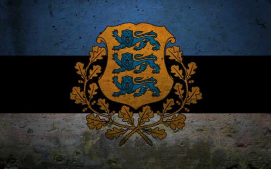 флаг, эстонии, флаги, гербы, estonian, arms, каптерка, eesti, купить, представляет, года,