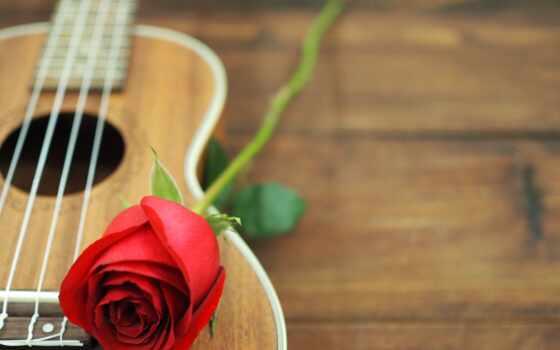 гитара, acoustic