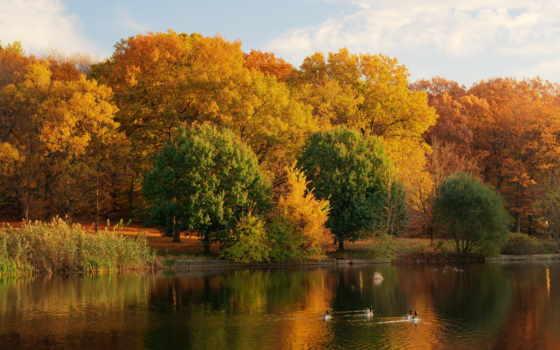 осень, природа, года, осенние, картинку, season, озеро, компьютер, zoom, планшета,
