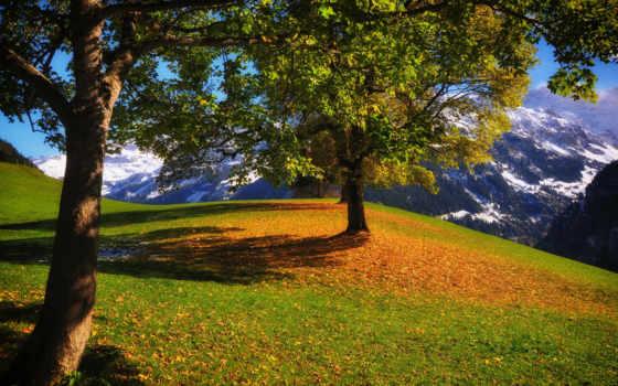 осень, ipad, горы