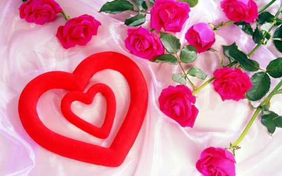 love, flowers, free