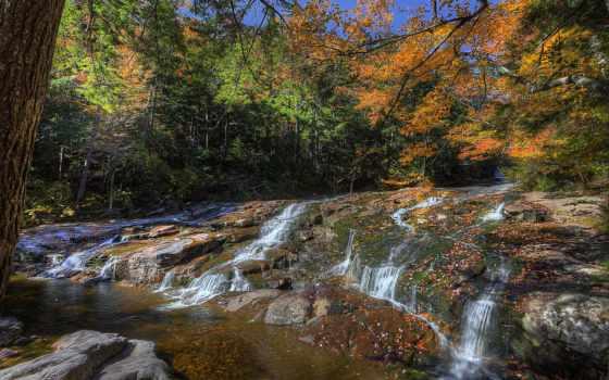 природа, fondos, trees, time, года, осень, pantalla, изображение, листва, imágenes,