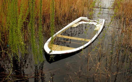 осень, корабли, да, озере, камыш, природа, лодка, еще, листва, уже,