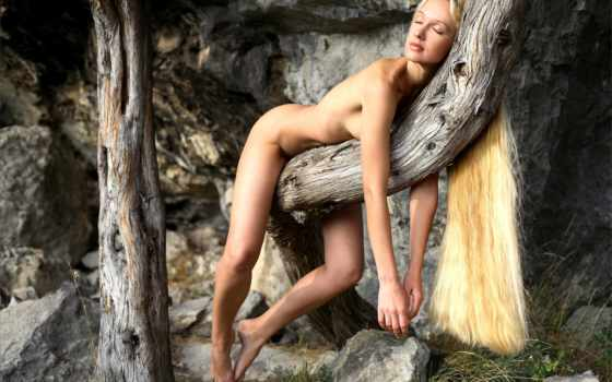 эротика, ню, прикрыта, дерево, сон