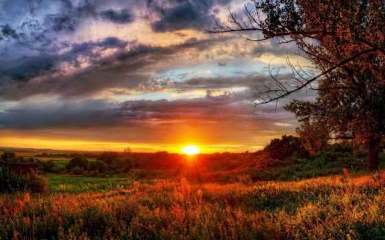 закат, природа, sun, поле, trees, landscape, красивый,