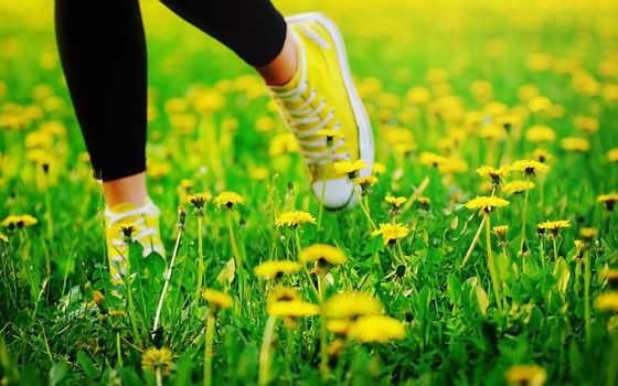 кеды, ноги, одуванчики, черные, лосины, трава,