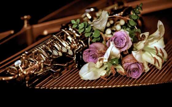 trumpet, еще, life, id, цветы, fond, rate, комментарий, взгляд, instrument, музыка