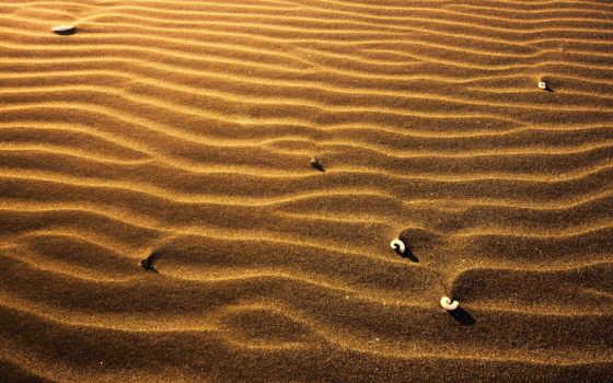 песок, ракушки, time, взгляд,