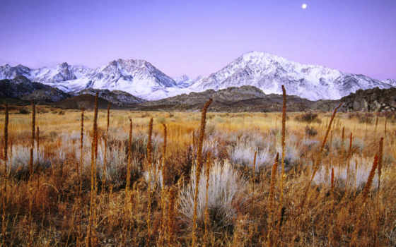 bishop, california, that