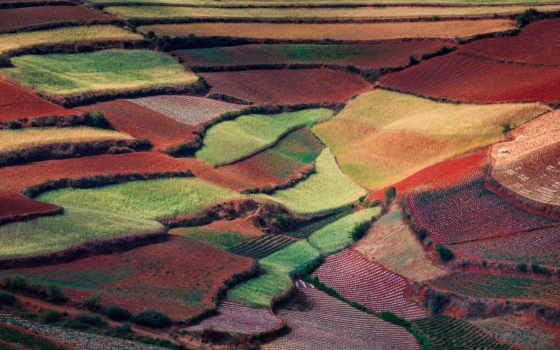 margin, природа, китаянка, поле, сверху, ковры, май, весна, радуга,