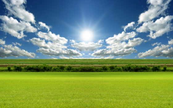 поле, зеленое, margin,