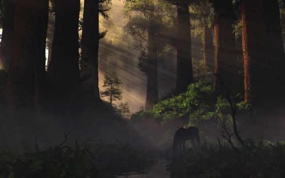 fore, природа, def, дерево, растение, rendering