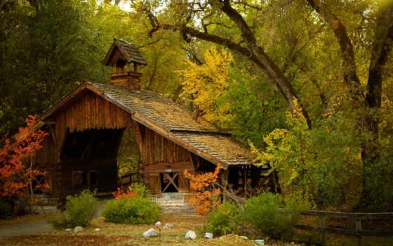 природа, house, дома, лес, лесу, изба, осеннем, осенью,