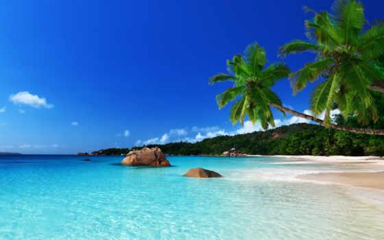 , пляж, море, пальмы,