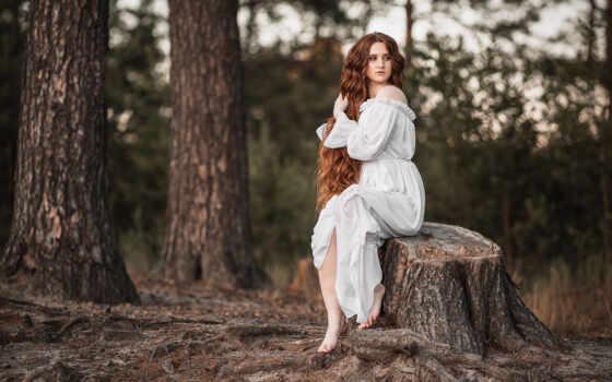 фото, аватар, forum, женщина, barefoot, комментарий, музыка, девушка, stump, pexel