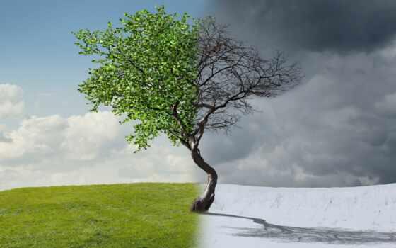 winter, season, landscape, дерево, illustration, concept, весна, summer, half