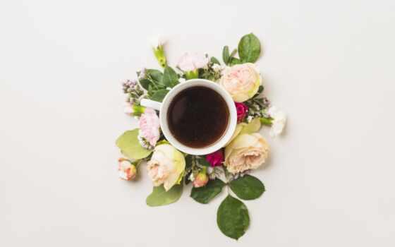 утро, postcard, род, красивый, coffee, напиток, cute, содержать, греет, девушка