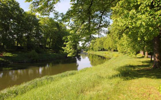 rzeka, park, tapety