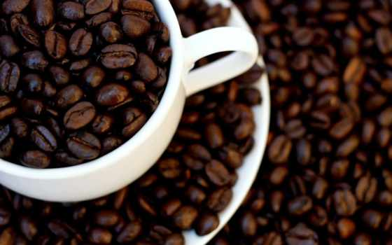 coffee, зерна, cup, чая, cinnamon, макро, телефон, страница, пряности,