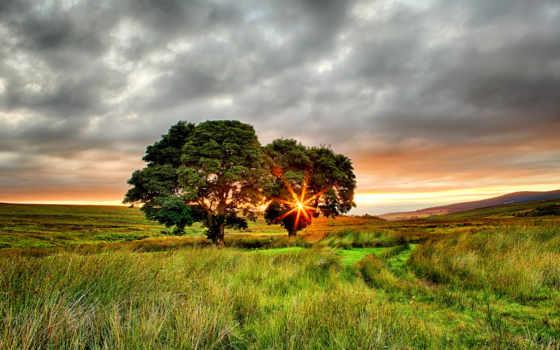 summer, sun, природа, закат, часть, восхитительный, поле, rylik, восхитительная,