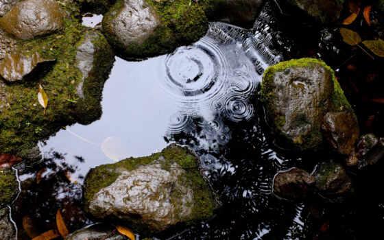 drip, water, цитата, константа, ложбинка, камень, ozhidatsya, lucretius, но, смена, площадь