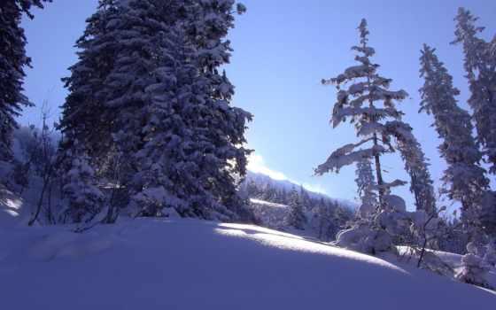 plochu, obrázky, tapety, winter,