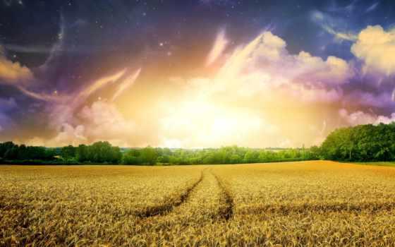 world, dreamy, free, full, desktop,