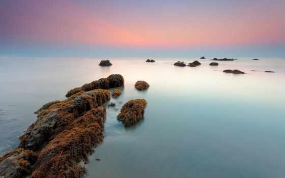 море, утро, камни, водоросли, февр,