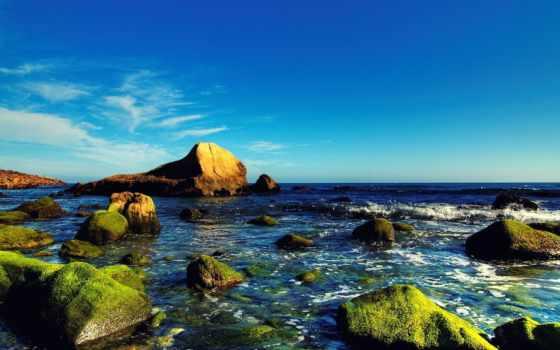 красивые, камни, очень, покрытые, мхом, разрешениях, разных, trees, waters,