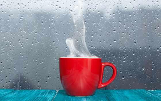 дождь, rainy, осень, погода, цитата, buzz, напиток, telephone, sayı, холод