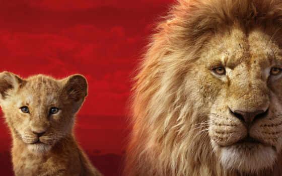 king, lion, сниматься, news