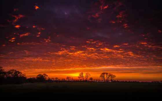 природа, небо, закат, облака, landscape, силуэты, деревья,