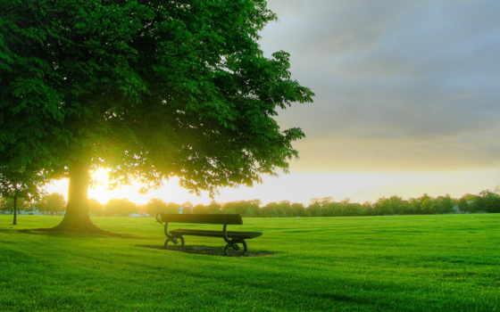 природа, картинку, oblaka