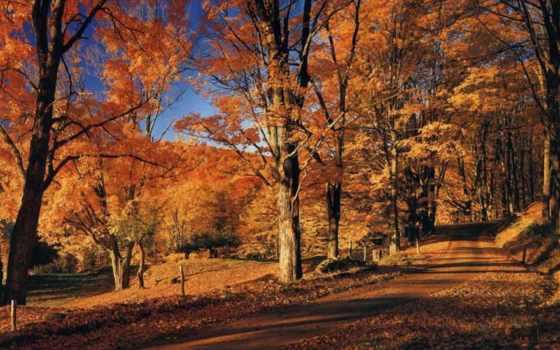 пейзажи -, time, песни, осень, осени, small, своими,