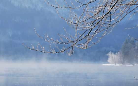 иней, озеро, туман