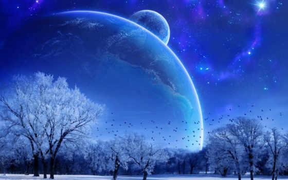 winter, природа, trees, птицы, landscape, фантастическая,