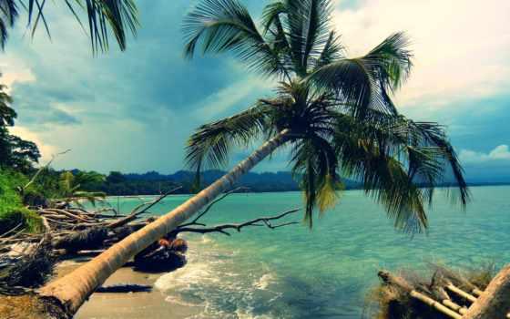остров, landscape, природа, ocean, пальмы, bali, берег, отдых, море, разрешениях,
