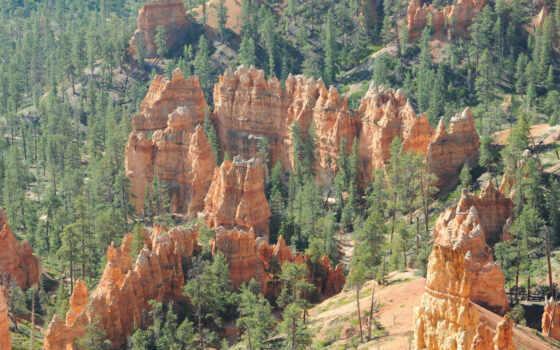 каньон, park, national, red, pine, bryce, utah, rock, unite
