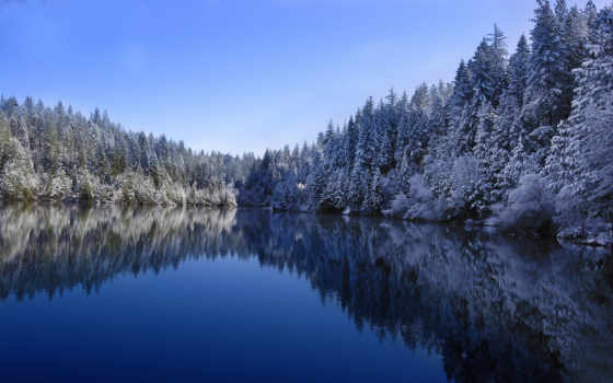 winter, озеро, лес