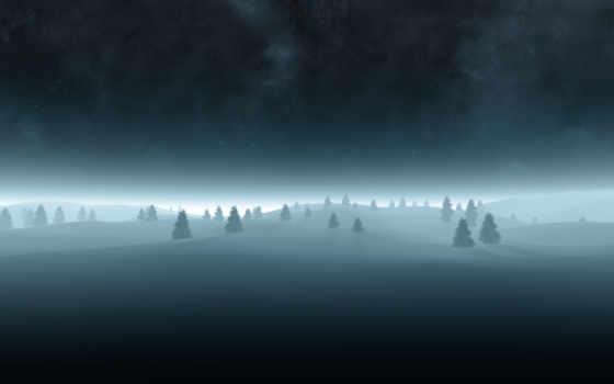 елки, ночь