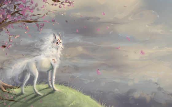 art, волк, обрыв