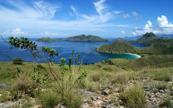 комодо, taman, nasional, pulau, padar, wisata, ди, dan, nusa, tenggara, yang,