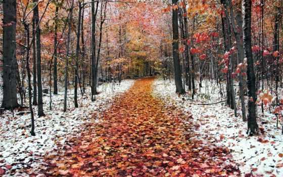 снег, initial, москве, любую, совершенно, нашем, fotohomka, галерее, опубликовано, сайте, картинку,